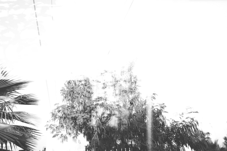 (c) mip pava4